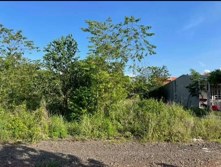 Bán đất khu phố 4 phường Tân Đồng giá 700tr dt 6,5×25×50tc