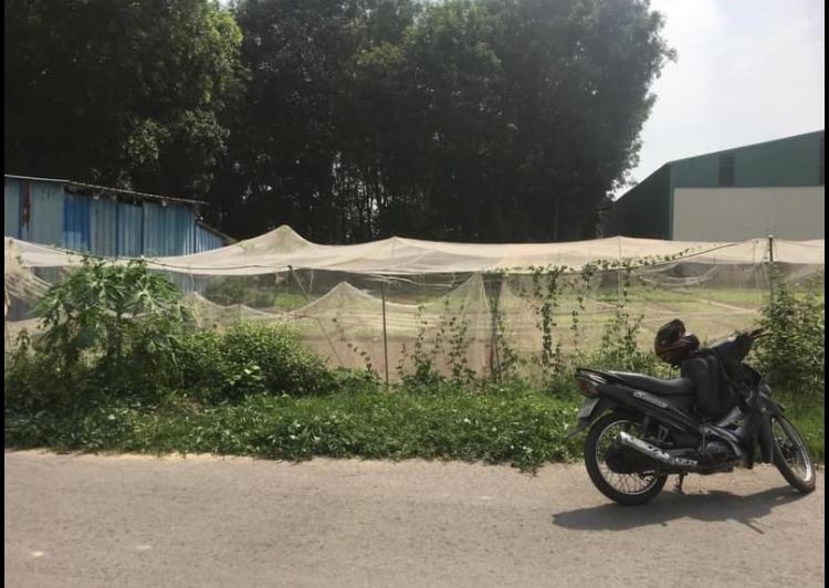 Bán đất phường Phú Mỹ giá 2tỷ 650tr dt 5*40*100m2tc